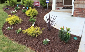 Moore Approved Front Yard Garden Landscaping Plants Flowers Shrubs