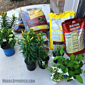 Moore Approved Yard Work Landscaping Gardening Supplies Plants Home Depot