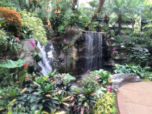 Gaylord Opryland Resort Hotel Nashville Atrium Garden Waterfall Scenic Plants Greenery