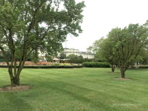 Gaylord Opryland Resort Hotel Nashville Exterior Grounds Property Driving Up Trees Outside