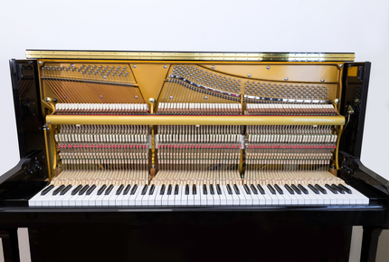 Piano Humidity Control