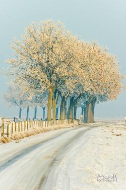15 Tips voor een succesvolle Winterfoto