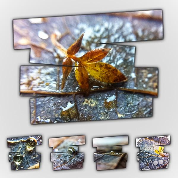iPhonografie Herfstcollage
