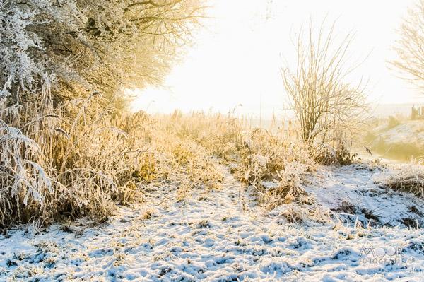De Wondere Wereld van Winterlandschappen