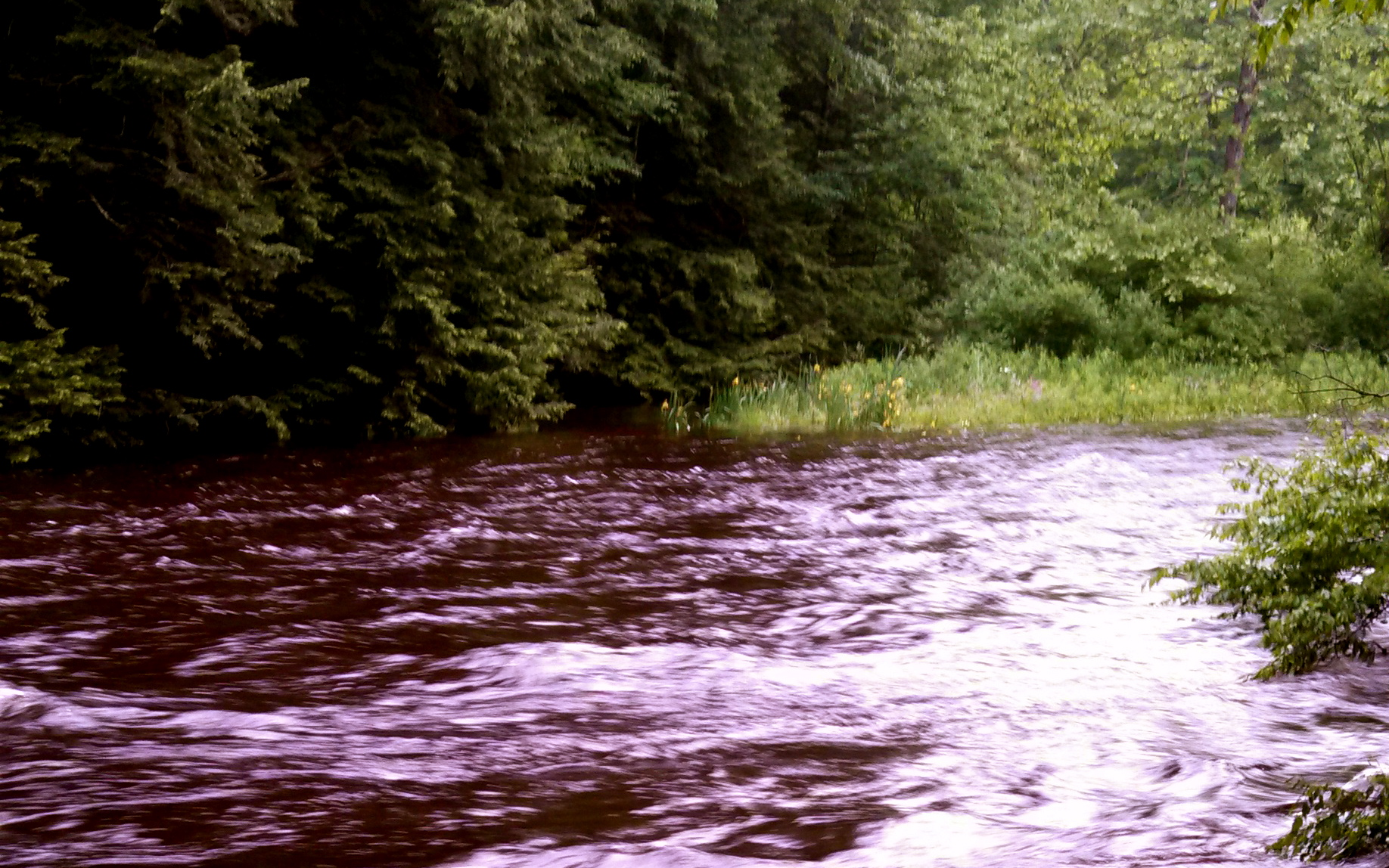 Fly fishing dog river vermont all the best fish in 2018 for Otter creek fishing report
