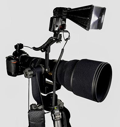 600w-teleflash