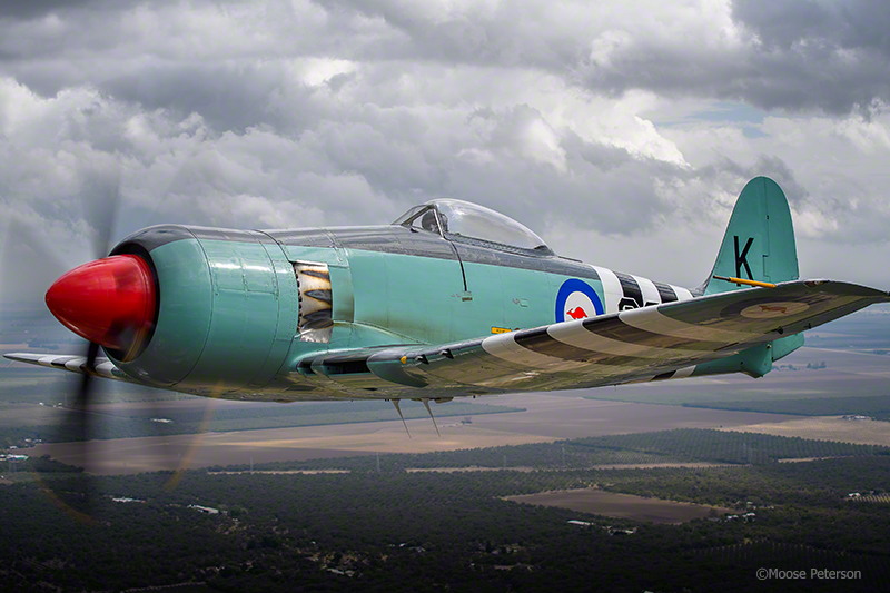 Hawker Sea Fury MkIIcaptured by D5 / 70-200f4 AFS