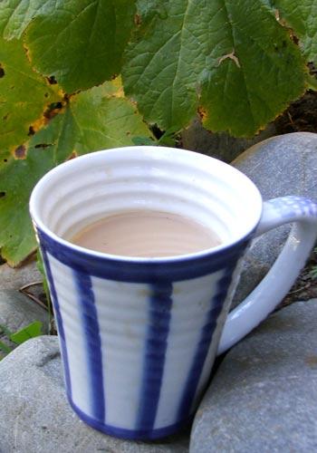 Mug of tea - Hot? Luke warm?