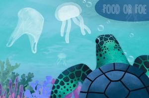 Food or Foe