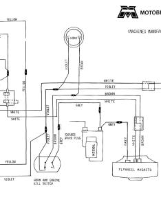 12 Volt Horn Wiring Diagram Free Picture  tutej
