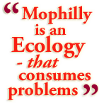 Mophilly is an ecology of smart, experienced people and sophisticated tools that consumes business problems and generates IT solutions.