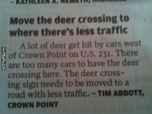 deer-traffic