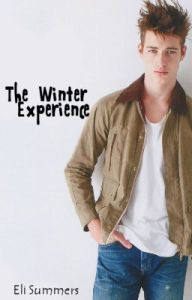Cover - The Winter Experience