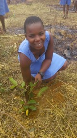 DORA WITH HER PLANTED TREE