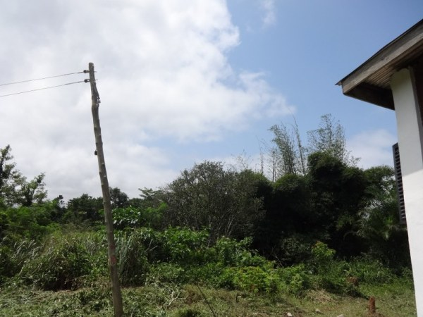 Distance from the building to the electricity pole - MORE Foundation