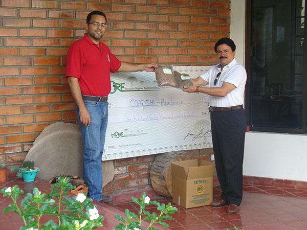 140,800 Tree Seeds to Coapihl
