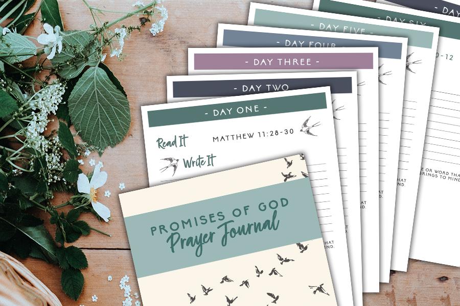 Promises of God Prayer Journal