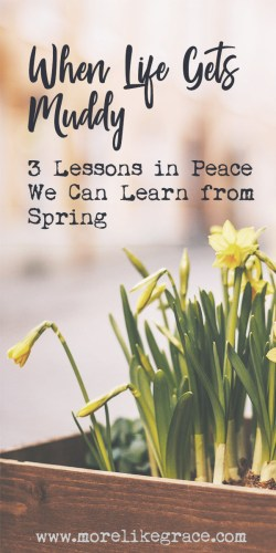 Devotional About Spring