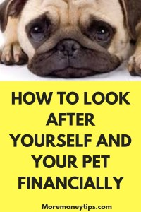 HOW TO LOOK AFTER YOURSELF AND YOUR PET FINANCIALLY