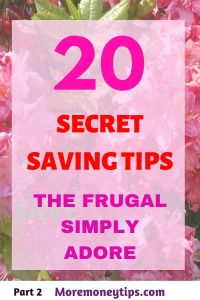 20 Secret saving Tips the Frugal simply adore.