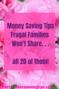 Money Saving Tips Frugal Families Won't Share...all 20 of them.