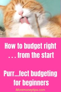 How to budget right... from the start. Purrf...ect budgeting.