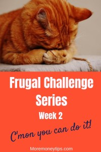 Frugal Challenge Series week 2 C'mon you can do it