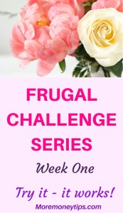 Frugal Challenge Series- week one. Try it-it works