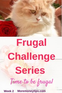 Frugal challenge series week 2