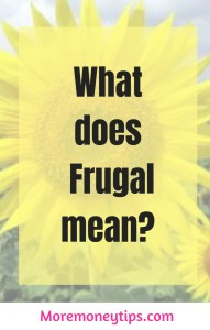 what does frugal mean