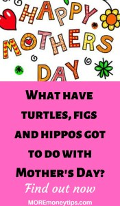 What have turtles, cats, figs and hippos got to do with Mother's Day?