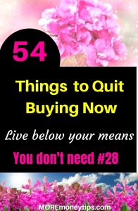 54 Things to quit buying now. Live below your means.