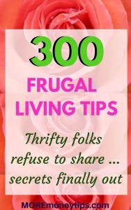 300 frugal living tips thrifty folks refuse to share . . .secrets finally out.