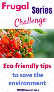 FRUGAL CHALLENGE SERIES week 10. Eco-friendly tips to save the environment.