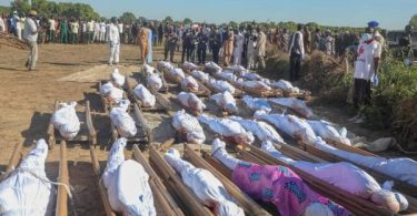 Panic As 38 More Corpses Recovered From Borno Massacre