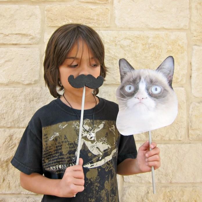 Grumpy-Cat-Prop-2