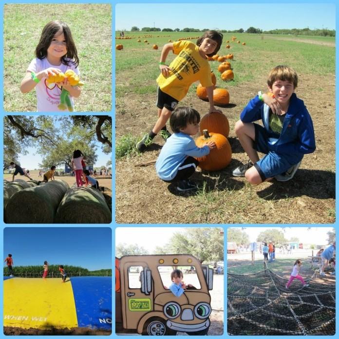 Central Texas fall fun South Texas Maize