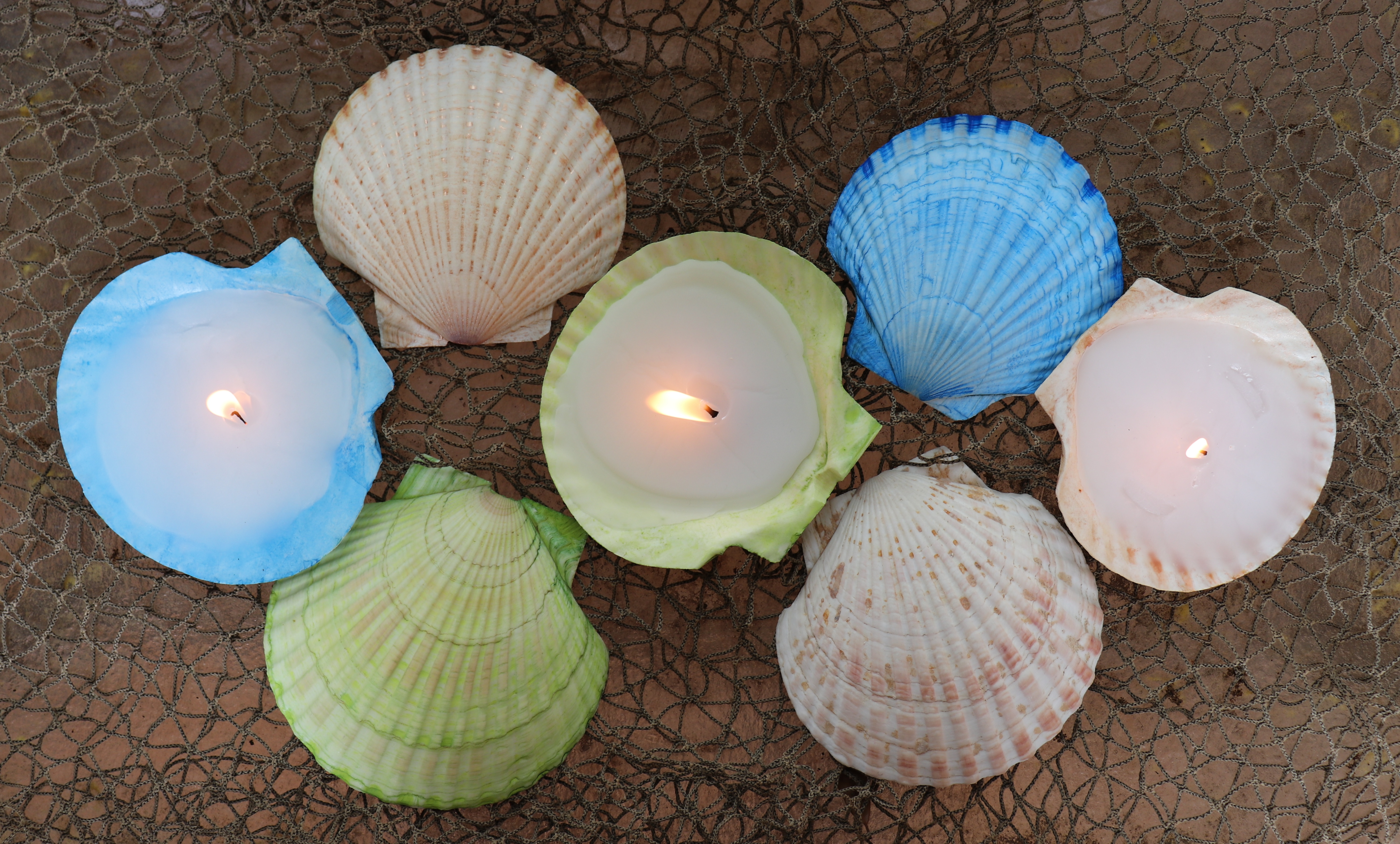 sea shell candles