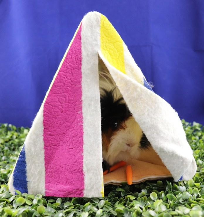 guinea pig tent DIY