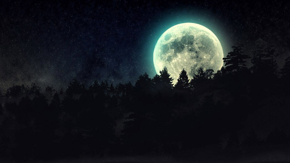 full-moon-beyond-the-pines-16545