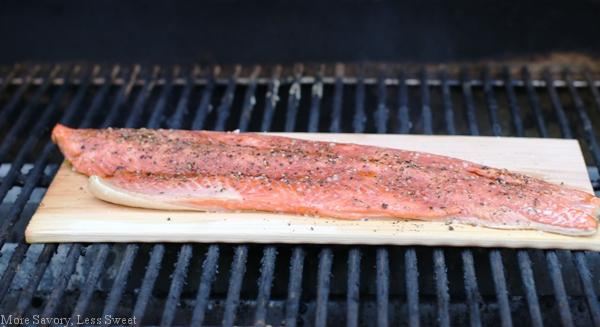 salmon 038.2