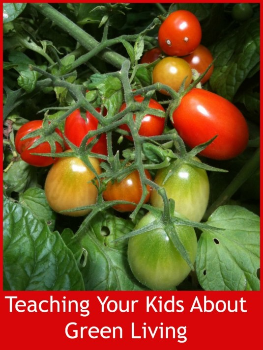Teaching Your Kids About Green Living