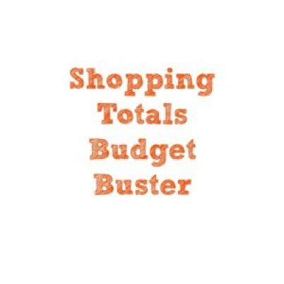 budget buster