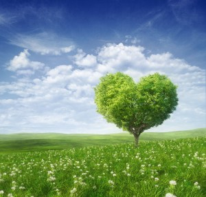 heart tree small