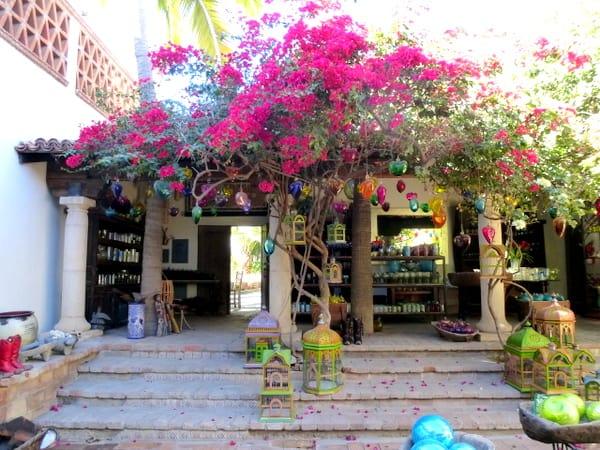 Inside La Coyota