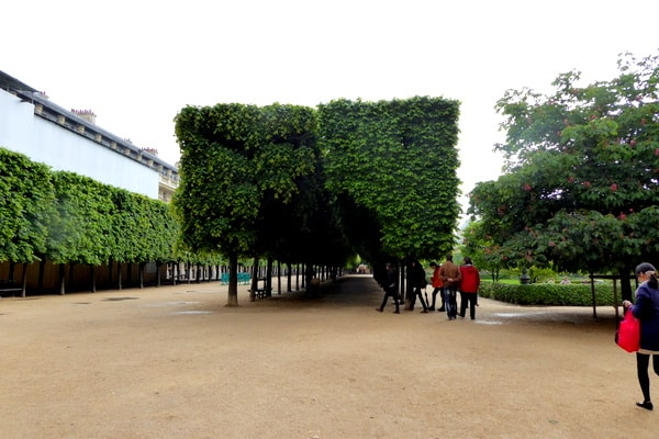 The manicured trees surrounding the courtyard