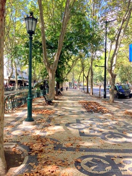 Beautiful tree-lined Avenida da Liberdade