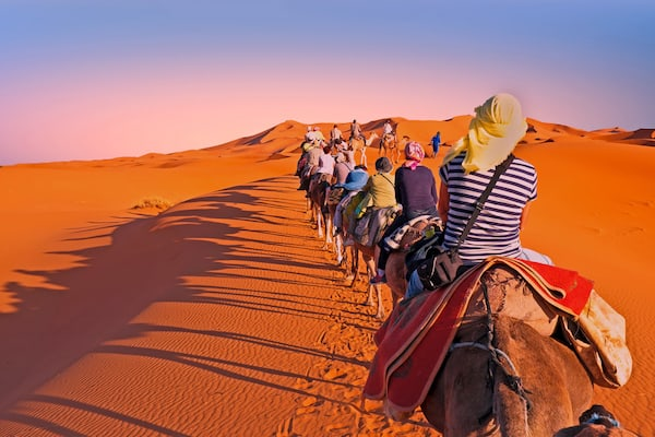 Camel safari in Morocco