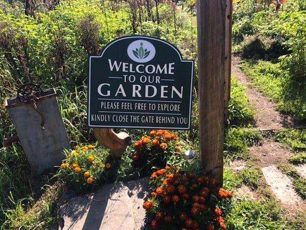 Discovering the Healing Garden