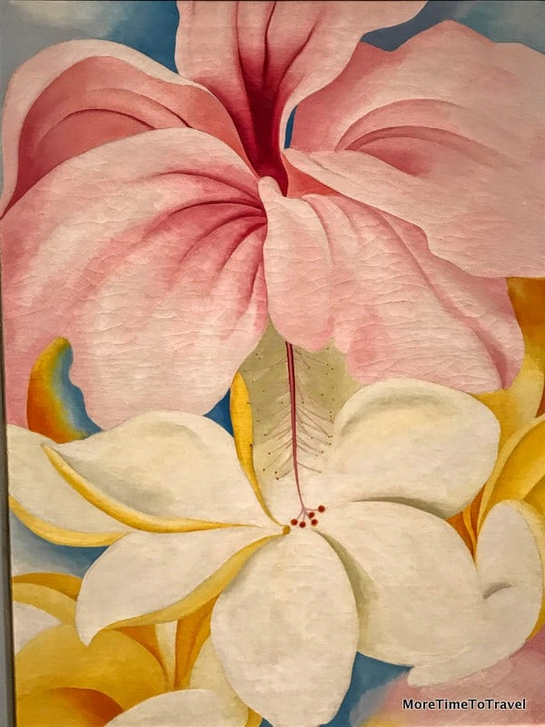 Hibiscus with Plumeria (on loan from the Smithsonian)